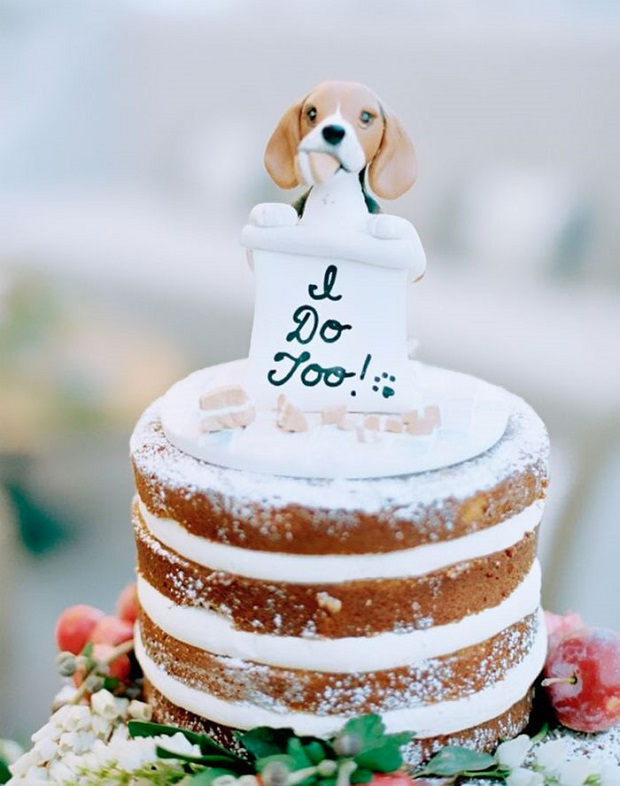 Pets-at-weddings-include-your-pet-in-your-wedding