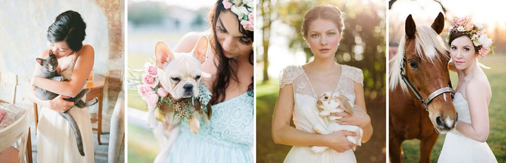 including your favorite pets in your ceremony