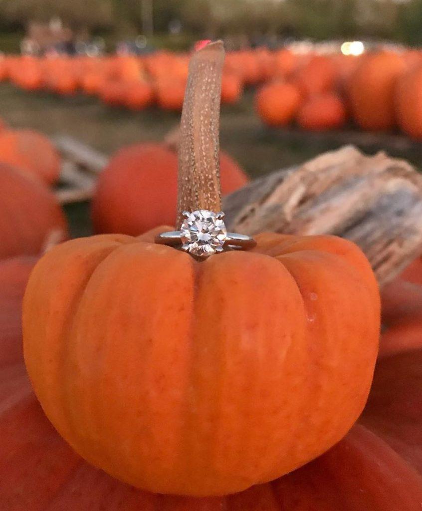 Pumpkin wedding proposal