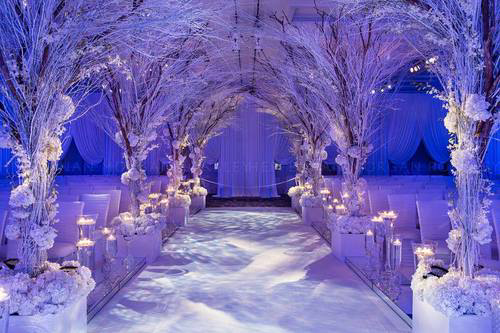winter-wonderland - wedding-ideas